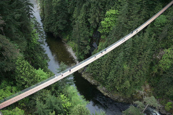 The Capilano suspension bridge. FEAR!
